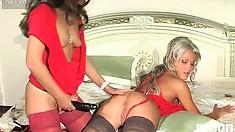 Dirty milf Cornelia prepares a fine rubber dick and bangs Sheila