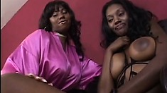 Stacked black lesbians caress each other's bodies and have some fun with sex toys