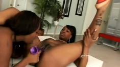 Curvy black lesbians find the pleasure they desire in a strap-on dildo