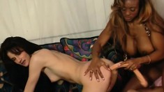 Pale white brunette indulges in lesbian sex with a buxom caramel babe