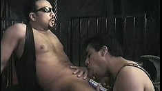 His cock is bound by heavy rings while a horny twink sucks him off