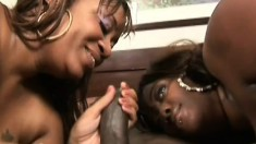 Two black hookers make a big dick burst and swap the thick load