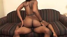 Big breasted ebony slut has a black dude satisfying her sexual urges